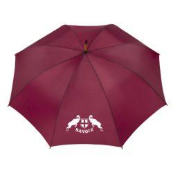 Parapluie-couleurssavoie