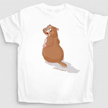 t-shirt-marmotte-couleurssavoie